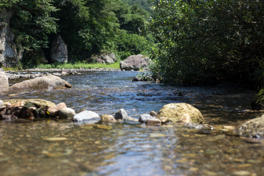 夏といえば、秋保で川遊び!