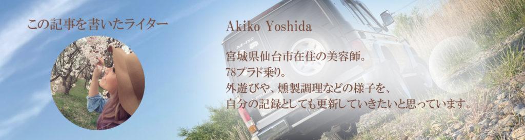 プロフィールAKIKO YOSHIDA