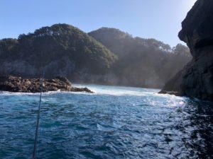 ロックフィッシュ!!宮城県から岩手県にかけての三陸リアス式海岸一帯では、50㎝を超える大型の個体が多数生息