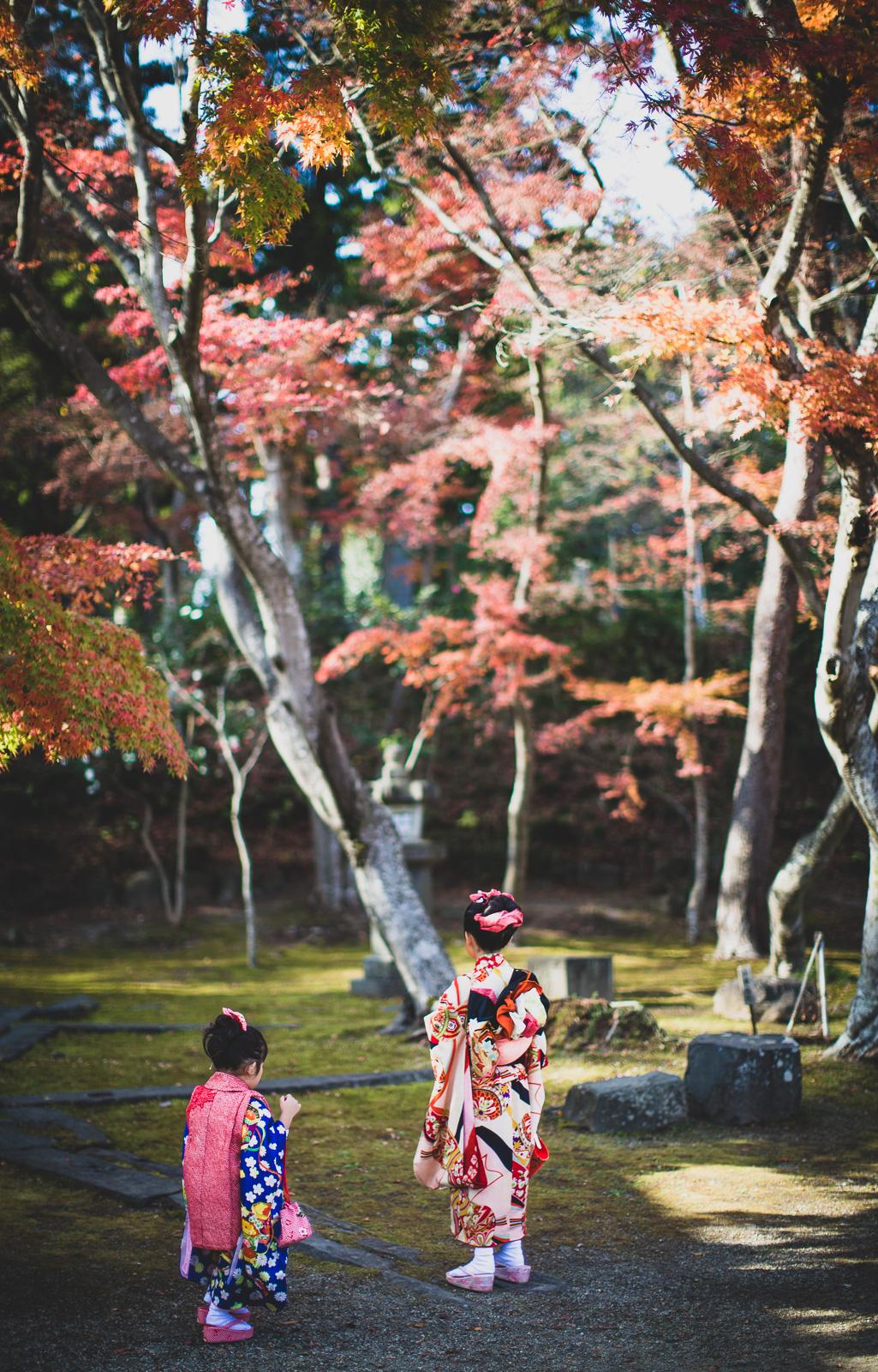 鹽竈神社(しおがま神社)七五三、人気スポット